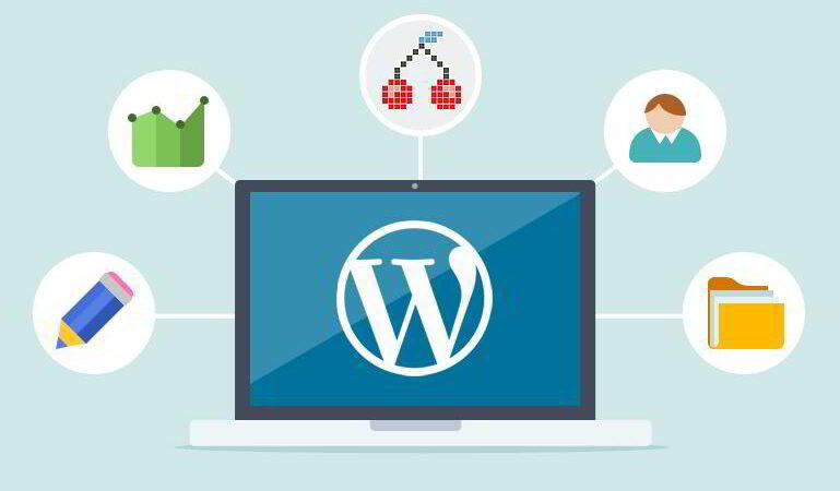Why You Need a Custom WordPress Design